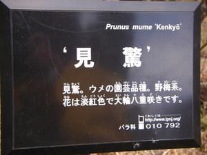 20100221_50.JPG